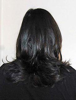 Hairback