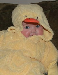 Duckcloseupblog